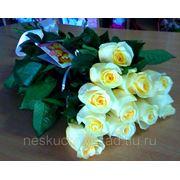"""Букет с 11 кремовыми розами """"Поздравляю!"""" фото"""