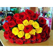 """Букет из 39 красных и желтых роз """"С Днем рождения!"""" фото"""