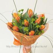 Тюльпаны рыжые фото