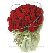 «Розы» фото