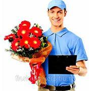 фото предложения ID 7343562
