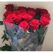 """Розы, букет 19 шт. (оформление и подкормка для цветов """"CHRYSAL""""(Голландия) в ПОДАРОК! фото"""