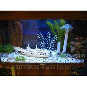 Аквариум Ювель Рио125 фото