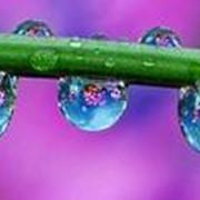 Дождевальная система автоматического полива фото