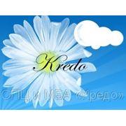 фото предложения ID 7344527