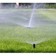 Система водопроводных гидрантов по дачному участку. фото