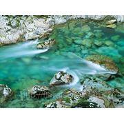 Устройство водоемов фото