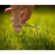 Уход за зелеными насаждениями и газоном фото