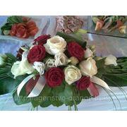 фото предложения ID 7347405
