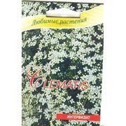 Клематис альпийский белый семена в мини-тепличках 5 шт фото