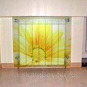 Декоративный экран для радиатора отопления фото