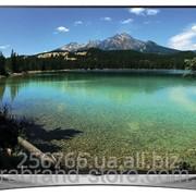 Телевизор LG 65UF950V фото