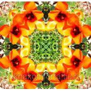 Цветные стекла фото