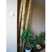 Декор из бамбука фото