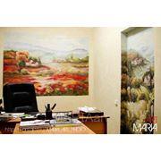 Роспись стен, аэрография. фото