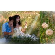 фото предложения ID 7354293