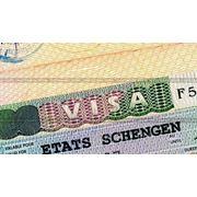 Фото на визу Шенген, комплект из 4 фотографий.