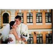 Заказать свадебную фотосъемку фото