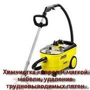фото предложения ID 7356760