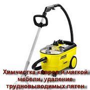 фото предложения ID 7356884