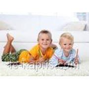 фото предложения ID 7357604