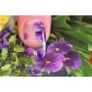 Наращивание ногтей (аквариумный) фото
