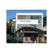 Языковые курсы в Новой Зеландии (KIWI English Academy) фото