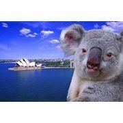 Английский язык в Австралии фото