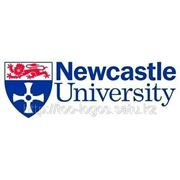 University of Newcastle фото