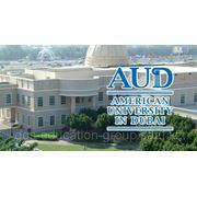 American University in Dubai фото