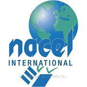 Языковые курсы по всему миру вместе с Nacel International! фото