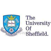 University of Sheffield фото