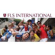 Спецпредложение FLS International фото