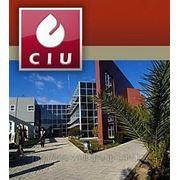 Обучение на Кипре Cyprus International University фото