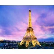 Образование во Франции. Accent Francais - курсы французского языка для студентов от 18 лет фото