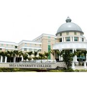 SEGi UNIVERSITY COLLEGE -программы бакалавриат, магистратура, foundation, цены, отзывы фото