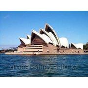 Обучение в Австралии. Программы профессионального образования от Martin College фото