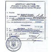 Апостилизация и легализация документов фото