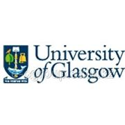 Foundation Certificate в University of Glasgow фото