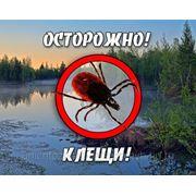 Уничтожение комаров, клещей фото