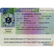 Шенгенская виза без присутствия фото