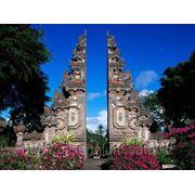 Виза в Индонезию фото