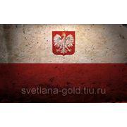 Виза в Польшу на 15 дней фото