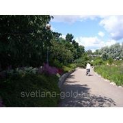 Виза в Финляндию на 7 дней фото