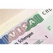 Шенген виза фото
