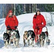 Оформление визы в Финляндию фото