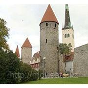 Оформление визы в Эстонию фото