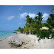 Виза в Тринидад и Тобаго