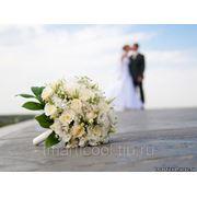 Проведение свадьбы фото