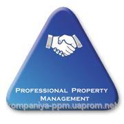 Компания PPM фото